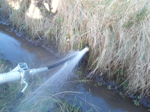 Drain Cleaning 11