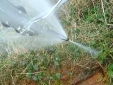 Forward and reverse spray nozzle